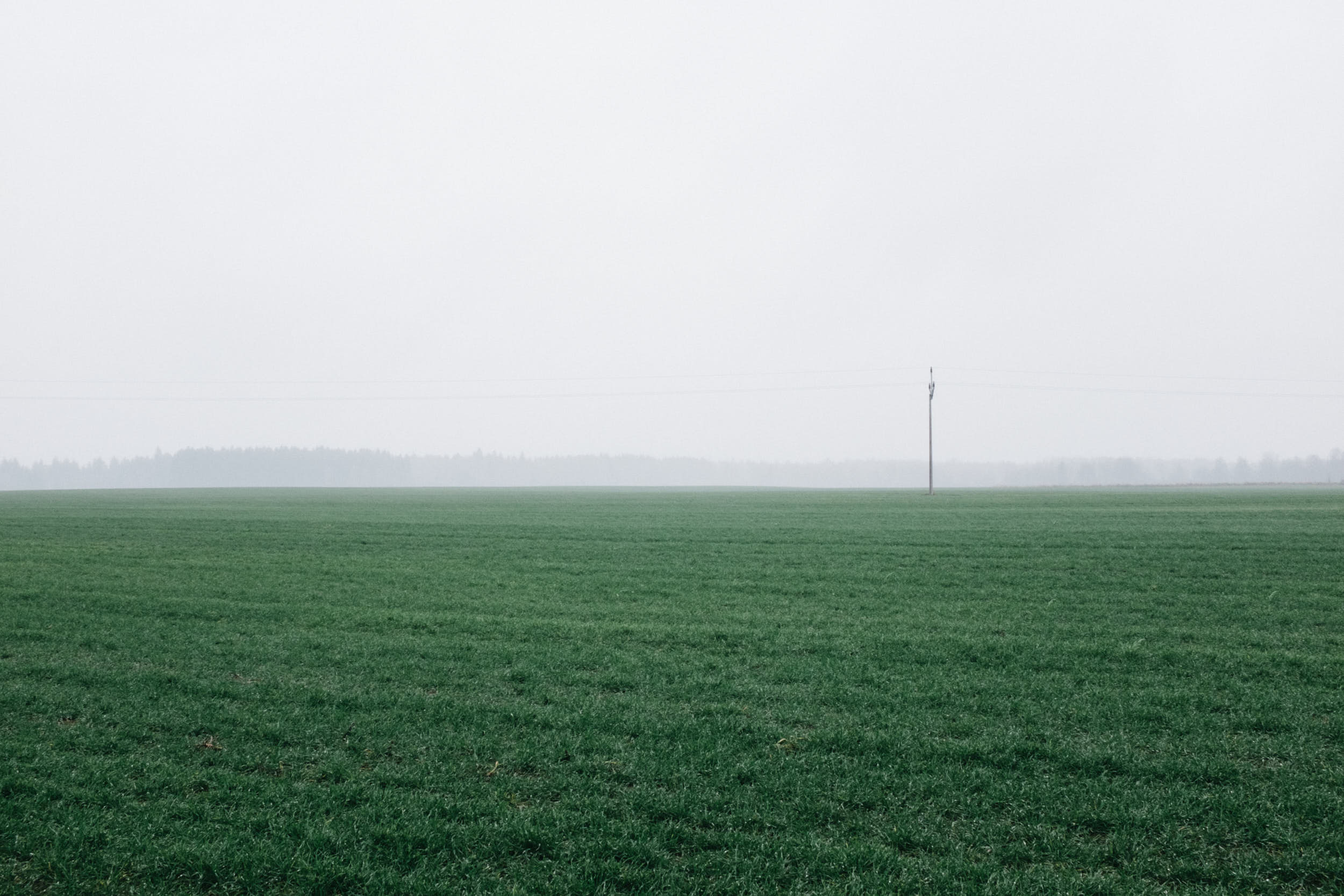 Minimalistic landscape photography of a misty field with electric wires running across the scene.