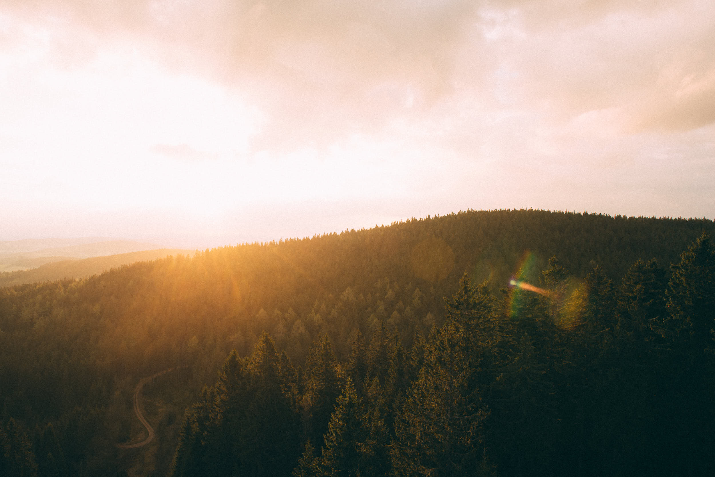Beautiful sunrise above wooded landscape shot from elevated perspective.