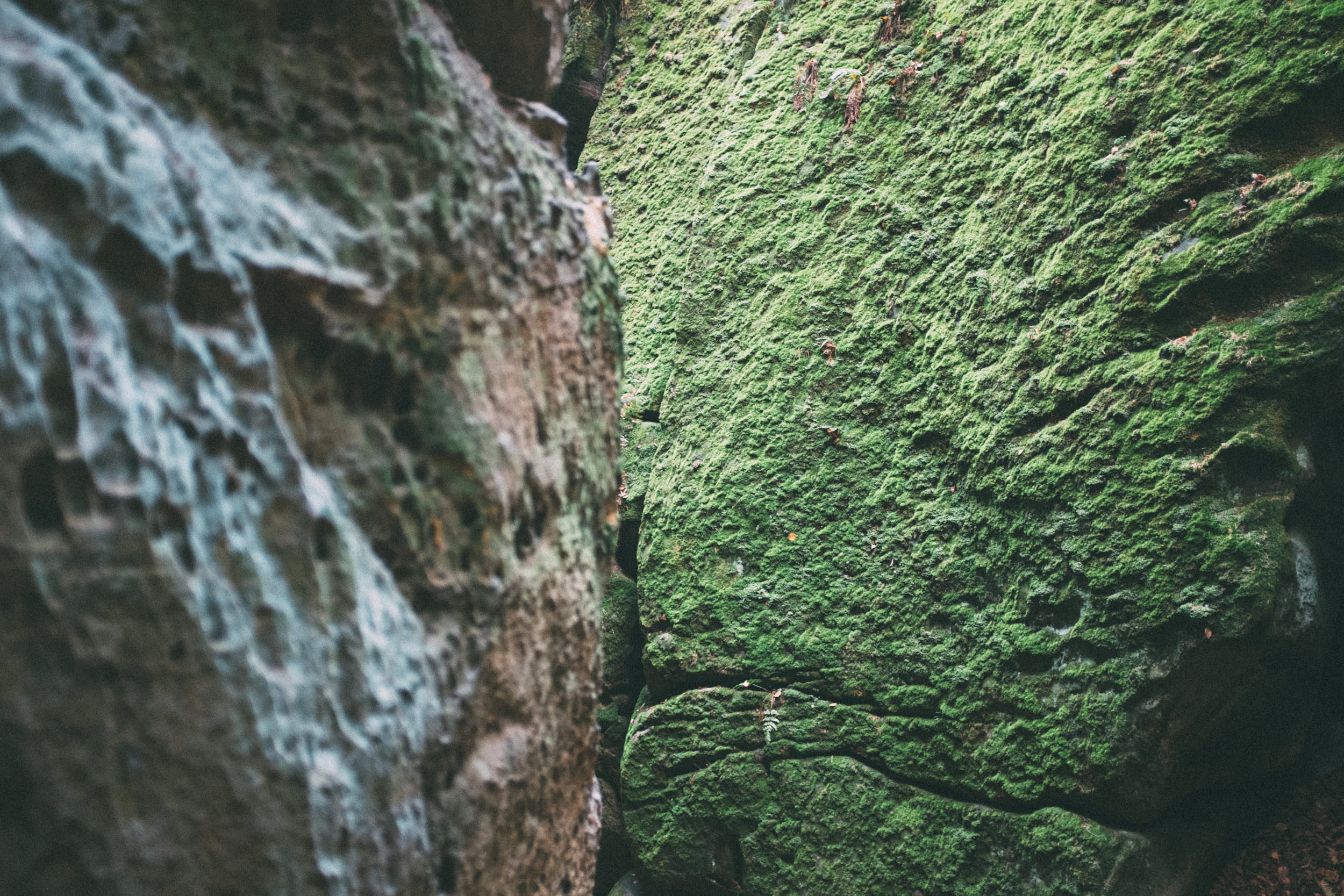 Abstract travel photography: large boulders covered with moss.